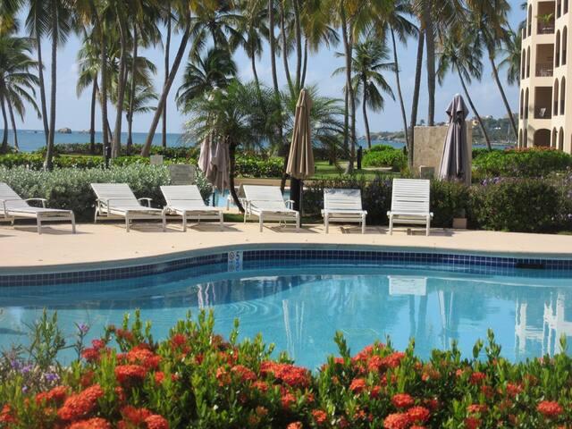 Prime Beachfront, Ocean View Villa, Palmas Del Mar (CB269) - Palmas del Mar
