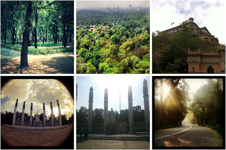 Bosque de Chapultepec - 23min. walking