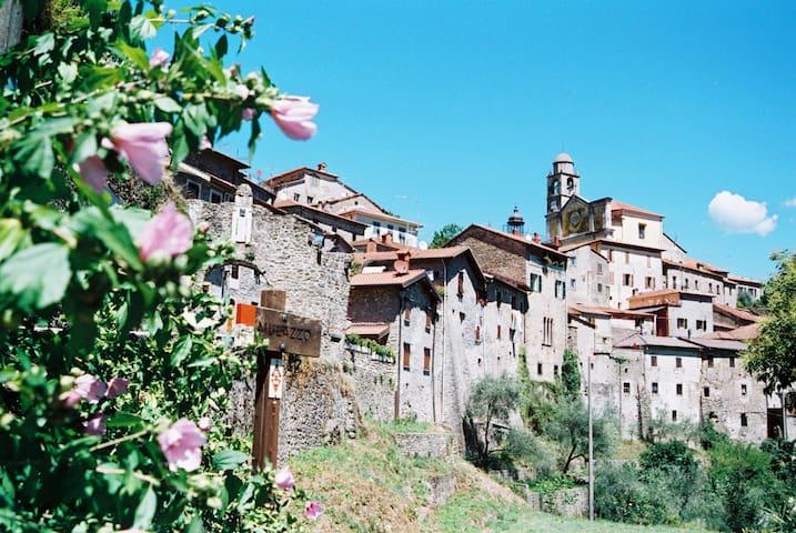 Stanza Privata in Borgo Medievale Toscano