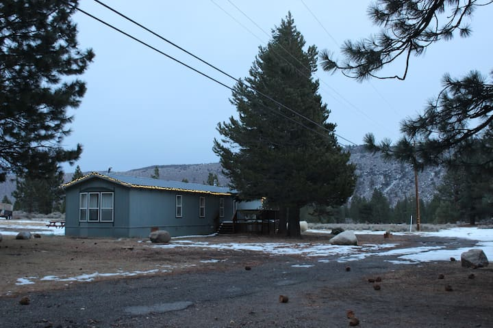 Large Cabin Near the Lake