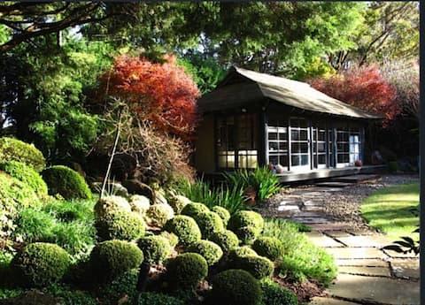 Japanese Studio Fitzroy Falls