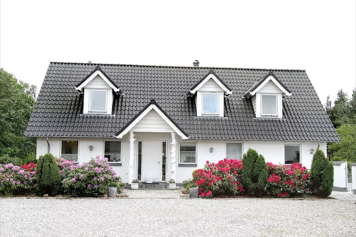 Wonderfull property in Brande - Brande - Villa