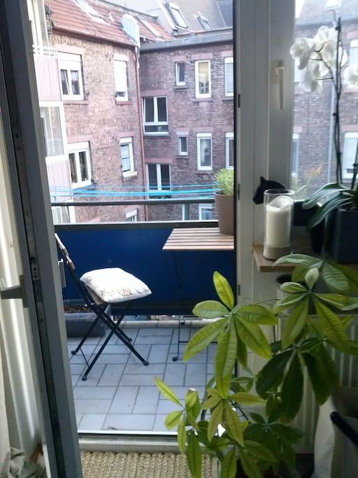 zentral gelegene gem tliche 4o qm wohnung flats for rent in mannheim baden w rttemberg germany. Black Bedroom Furniture Sets. Home Design Ideas