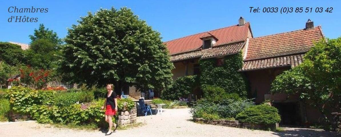 Chez Sylvie et Thierry - Royer - Bed & Breakfast