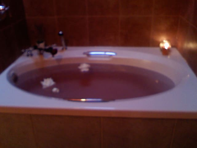 Master Suite soaker tub for 2 with rainshower