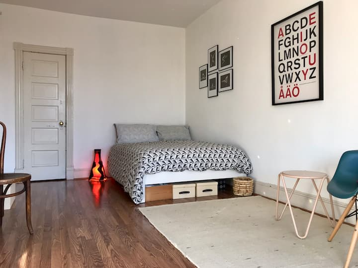 Large Bedroom with Beautiful Light