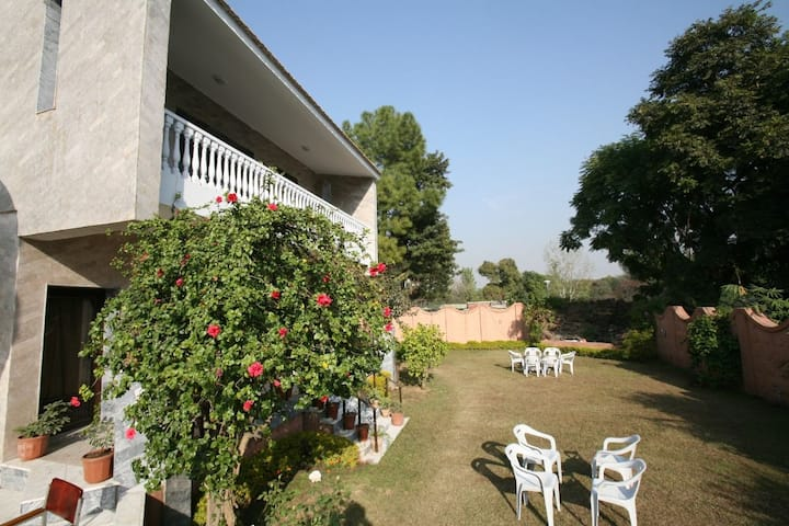 Cosmos Guest House