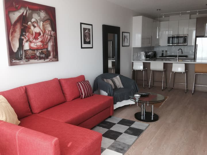 One Year + Rental, New One Bedroom Apartment