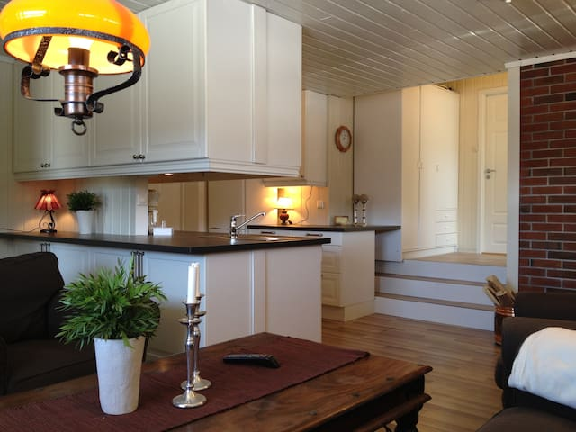 Appartement i Ski/Hiking Resort - Hol - Apartment