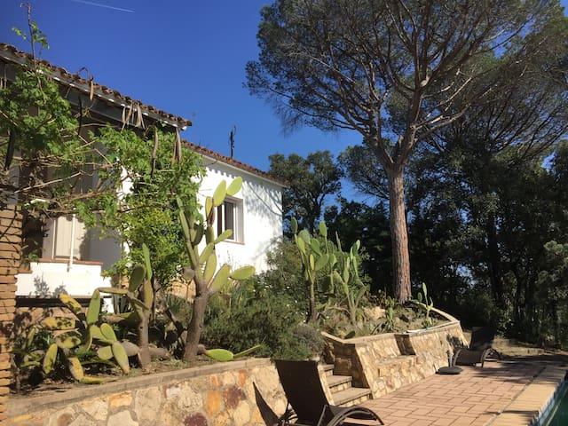 Maison 6 personnes avec piscine et jardin - Santa Cristina d'Aro - Rumah liburan