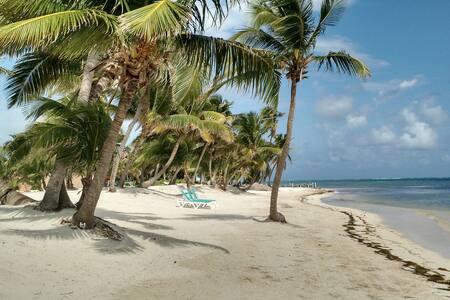 Getaway Beach Adventure with Sun, Sand, and Reef! - Сан-Педро