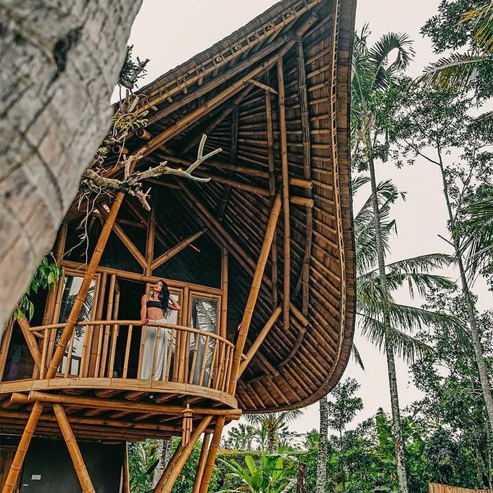 Hide Tumbuk Bamboo by Atharva Bali