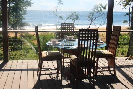 Stunning Bluff Beach Oceanfront Home