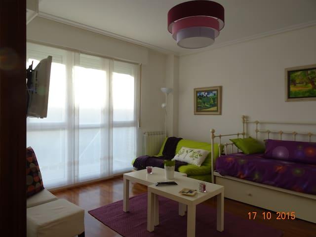 """Apartamento """"loft"""" en Laguardia. Nº R. T. EVI0024 - Guardia"""