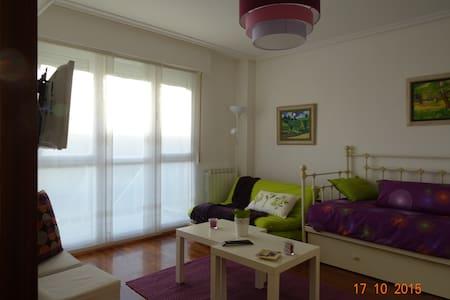 "Apartamento ""loft"" en Laguardia. Nº R. T. EVI0024 - Guardia - Loteng"