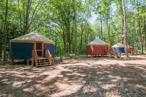 Turtle Yurts - Yurt 3