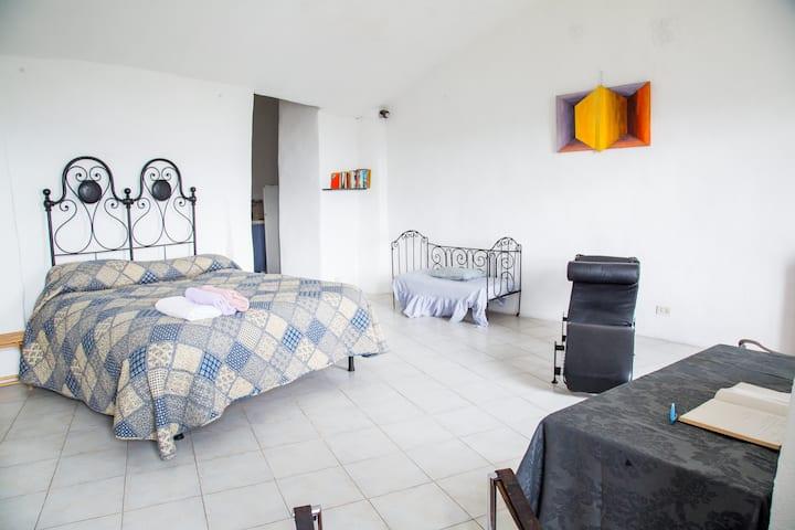 Casa Wilmot Bright Spacious Gallery Apartment