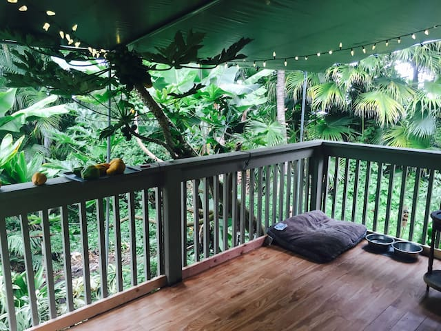Quiet Cottage near Kealakekua - キャプテンクック - 一軒家