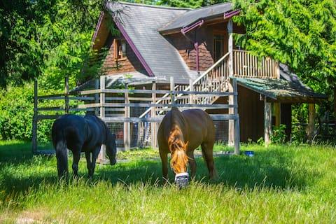 Sunnyside Acres Cottage- Horse Farm Experience
