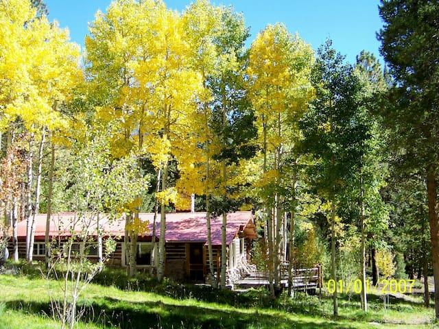 2 Bedroom Creekside Log Cabin - Nathrop - Srub