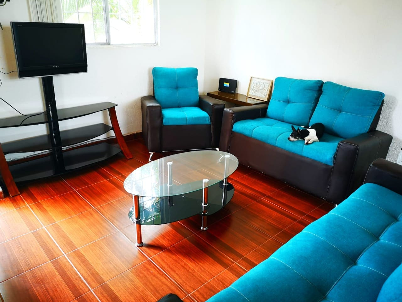 Enjoy a relax in the spacious cozy and bright living room (shared area) Led TV and Wifi are offered to our guests.