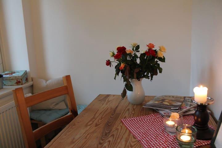 Charmante Altbauwohnung im Familienviertel - Dresden - Apartment