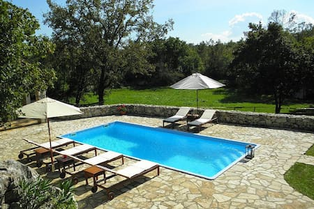 46 Villa Marta only 7 km from Rabac 19 - Sveta Nedelja - 別荘