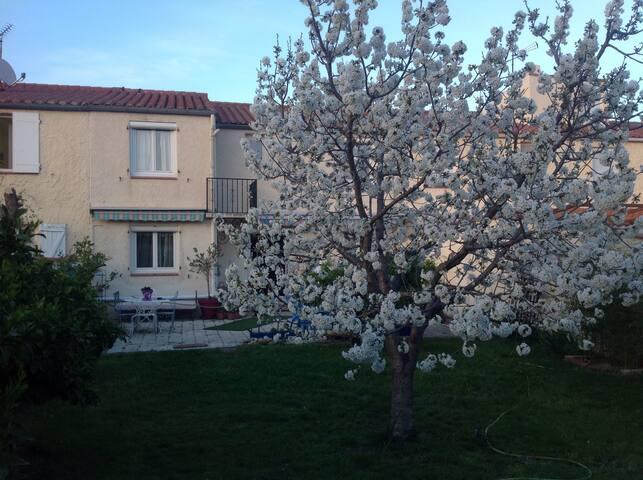 Belle villa proche Collioure et mer - Palau-del-Vidre - Hus