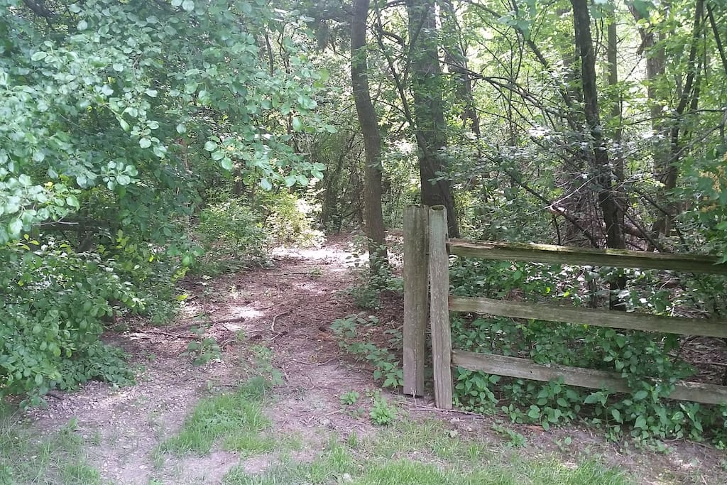 Path to camping area