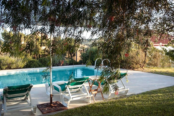 Lavanda House Swimming pool Garden - Cadaval Municipality - Casa de camp