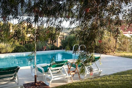 Lavanda House Swimming pool Garden - Cadaval Municipality - Villa