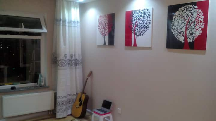 Near City Center, clean and comfy, 2nd bedroom