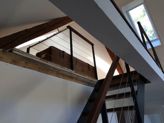 Galeriewohnung im Zentrum Baden-Badens mit Kamin - Baden-Baden - Apartment