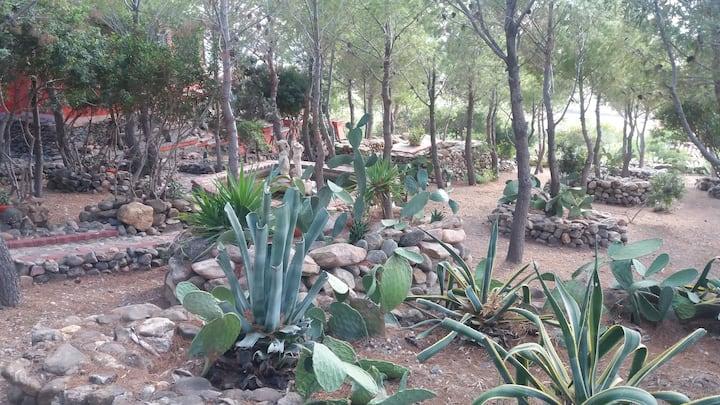 Panoramica villa oasi con piscina privata