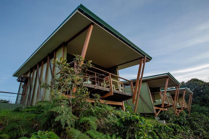 Chayote Lodge Recibidor Suite - King Bed