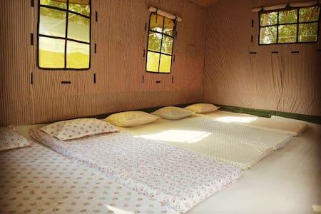 Hive Camping