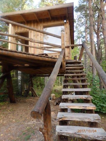 """Baumhaus """"Karu"""" auf der Insel Saaremaa"""