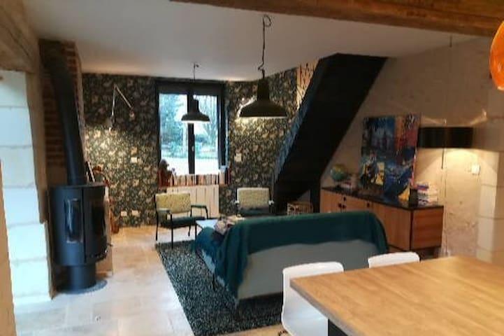maison tourangelle cosy proche chenonceau/beauval