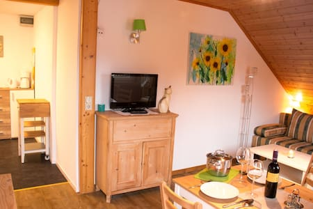 Apartment Dachsteinblick near Schladming - Aich - Serviced apartment