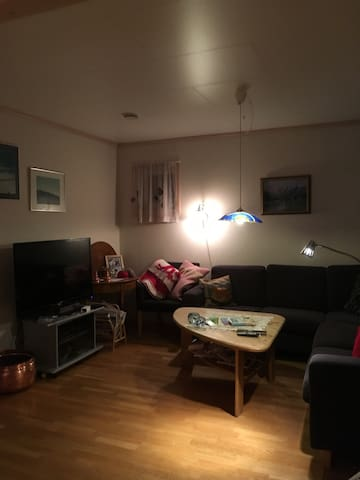 Singsaker,two bedrooms and bathroom - Trondheim - Inny