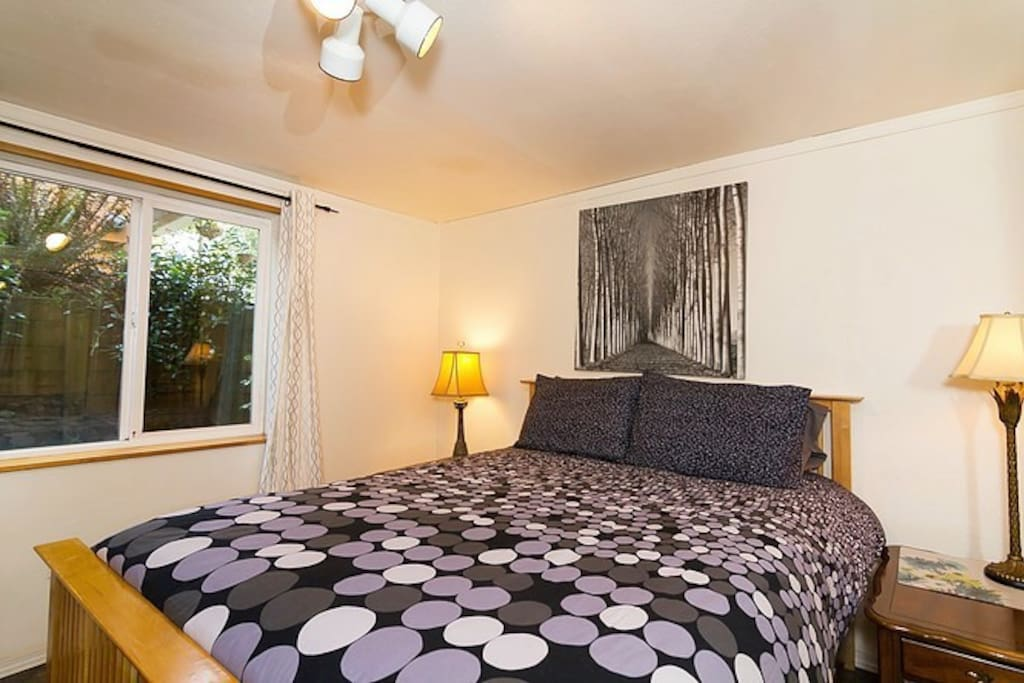 Cozy queen size bed in this sweet one bedroom apartment with 4x4' south facing window.
