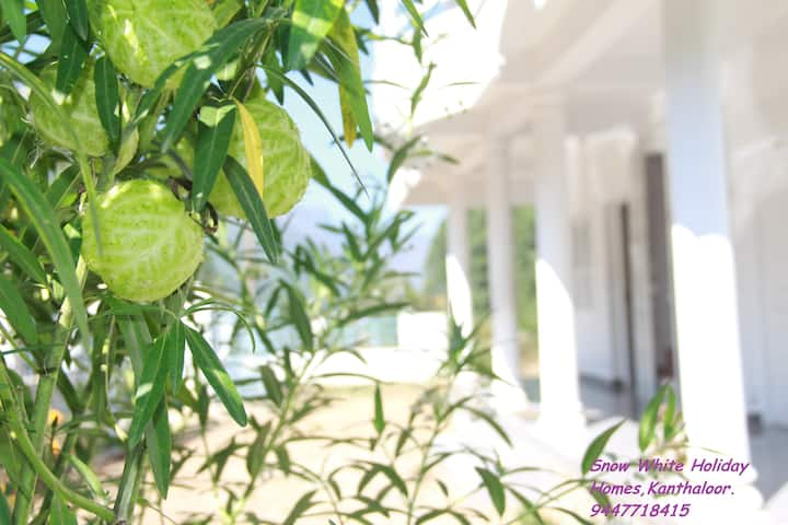 Snow White Holiday Homes,Kanthaloor, Full Property