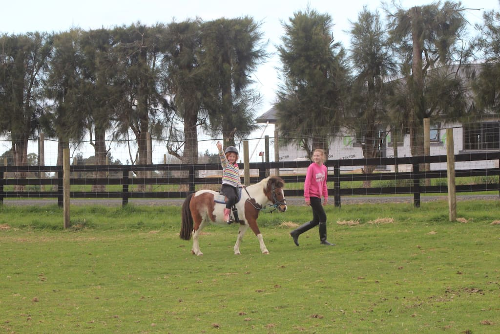 Pony rides available or bring your own horses, we're close to McLarens Falls equestrian park, and waterfalls, animal park and beautiful walks