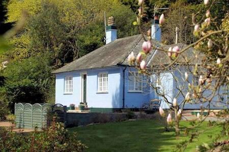 The Blue House @ Magnolia Lake