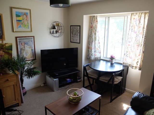Spacious One Bed Apartment in Beautiful Richmond
