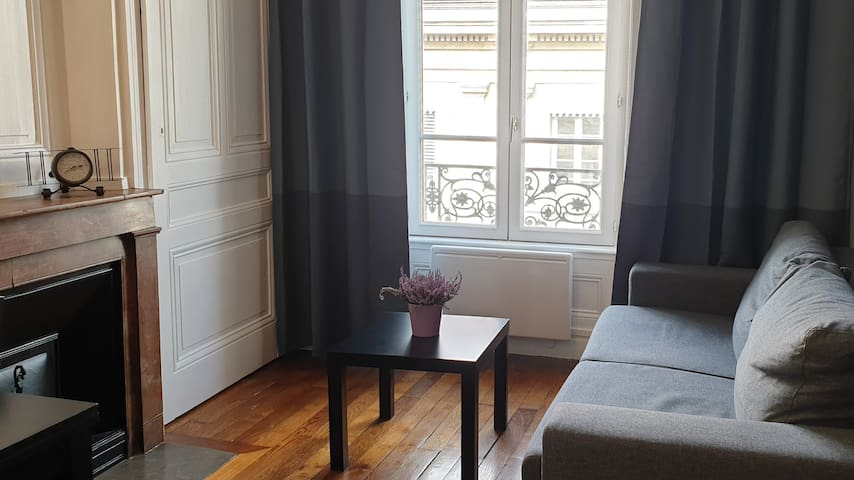 Confort apartement in the heart of Lyon center