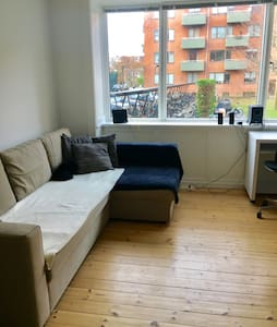 Bright and cosy flat in Central Copenhagen - Frederiksberg