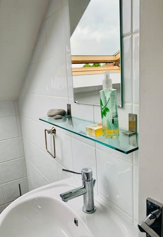 Hand-Basin with mirror