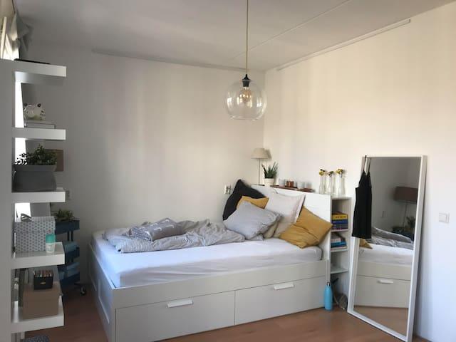Willem beukelzstraat for single female