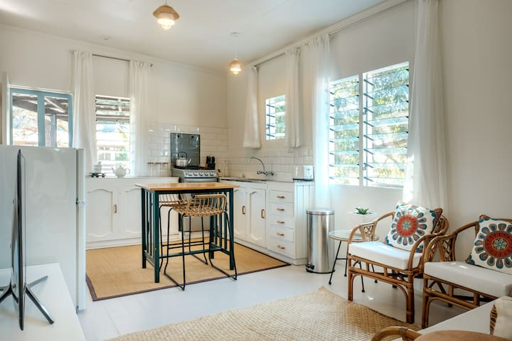 Quaint newly reno'd roof apt in busiest urban area